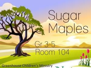 Sugar Maples Graphic